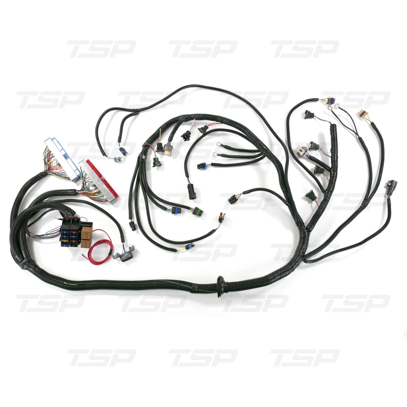 [NRIO_4796]   STANDALONE WIRING HARNESS FOR DRIVE-BY-CABLE LS1 WITH T56 MANUAL  TRANSMISSION | T56 Wiring Harness |  | F-Body Speed llc